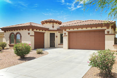 Anthem Single Family Home For Sale: 3402 W Summit Walk Drive