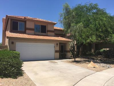 Cave Creek Single Family Home For Sale: 28440 N 47th Street