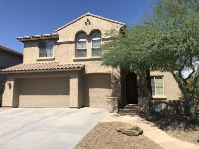 Phoenix Single Family Home For Sale: 5110 W Swayback Pass