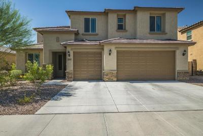 Phoenix Single Family Home For Sale: 2541 W Royer Road