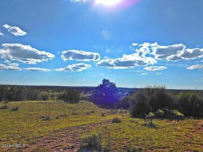 Coconino County, Yavapai County Residential Lots & Land For Sale: 6229 S Rising Sun Road