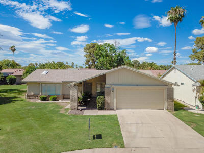 Maricopa County Single Family Home For Sale: 519 Leisure World