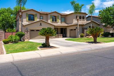 Gilbert Single Family Home For Sale: 542 E Benrich Drive