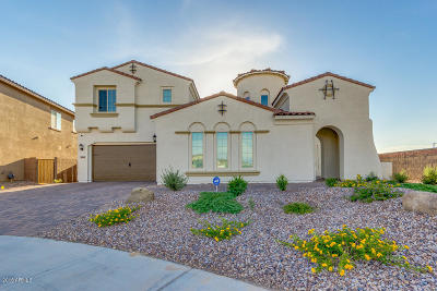 Gilbert Single Family Home For Sale: 7640 S Abbey Lane