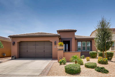 San Tan Valley Single Family Home For Sale: 1421 E Elysian Pass