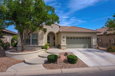 Goodyear Single Family Home For Sale: 15571 W Roanoke Avenue