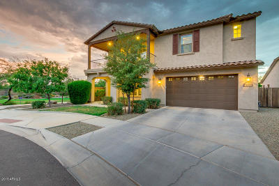 Chandler Single Family Home For Sale: 4840 S Mingus Drive