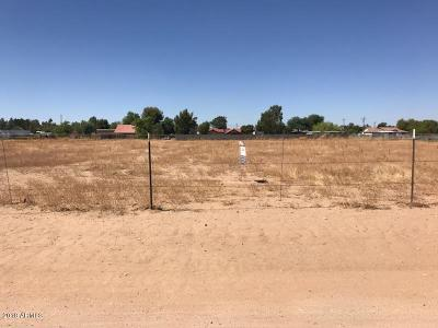 Litchfield Park Residential Lots & Land For Sale: 16220 W State Avenue