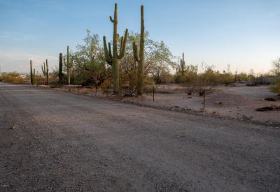 Mesa Residential Lots & Land For Sale: 10220 E Brown Road