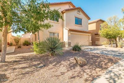 Maricopa Single Family Home For Sale: 42418 W Sunland Drive