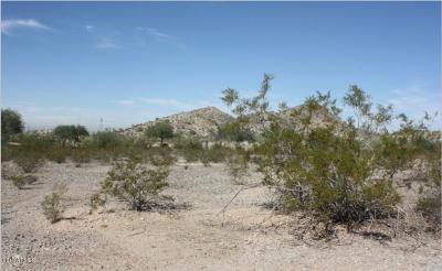 Goodyear Residential Lots & Land For Sale: 8873 San Angelo Street
