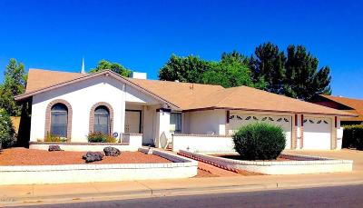 Mesa Single Family Home For Sale: 2647 S El Marino
