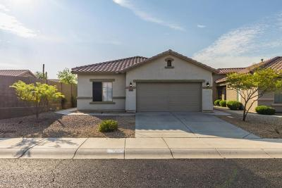 Anthem Single Family Home For Sale: 40565 N Territory Trail