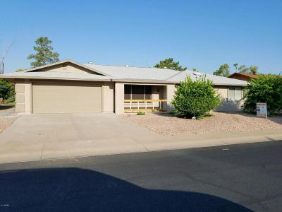 Sun City Single Family Home For Sale: 18614 N Palo Verde Drive