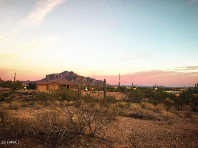 Apache Junction Residential Lots & Land For Sale: 5025 N Idaho Road