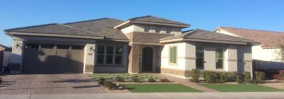 Chandler Single Family Home For Sale: 3350 E Azalea Drive