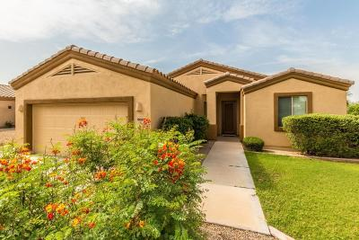 Cave Creek Single Family Home For Sale: 5065 E Mazatzal Drive