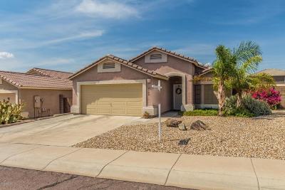 Glendale AZ Single Family Home For Sale: $252,000