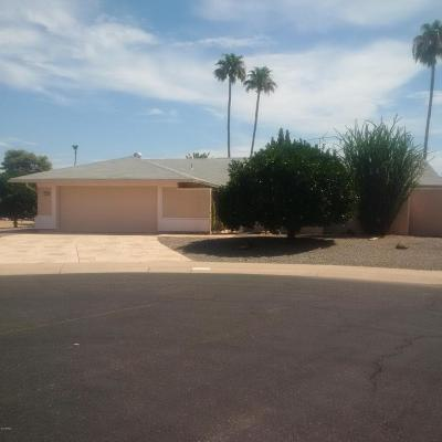 Sun City West Rental For Rent: 13542 W Spanish Garden Drive