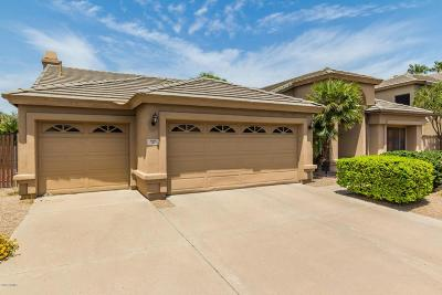 Scottsdale Rental For Rent: 9108 N 118th Place