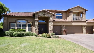 Peoria Single Family Home For Sale: 8232 W Electra Lane