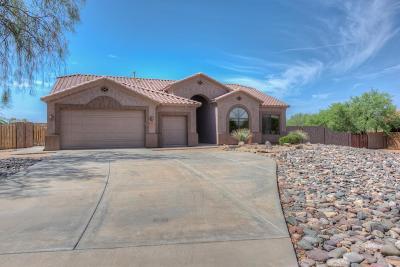 Phoenix Single Family Home For Sale: 105 E Tanya Road