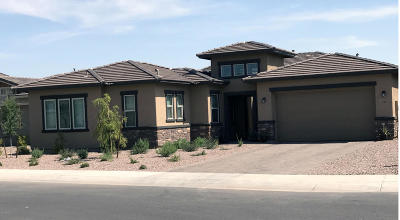 Peoria Single Family Home For Sale: 9339 W Plum Road