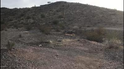 Laveen Residential Lots & Land For Sale: 392x W Sunrise Drive