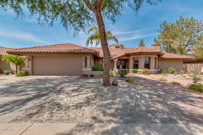 Tempe Single Family Home For Sale: 1024 E Vinedo Lane