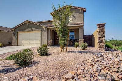 San Tan Valley Single Family Home For Sale: 608 W Blue Ridge Drive