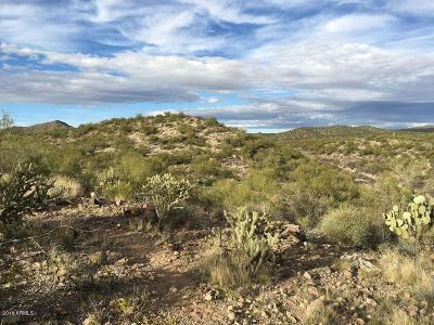 Yavapai County Residential Lots & Land For Sale: 38950 S Constellation Road