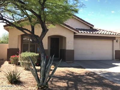 Cave Creek Single Family Home For Sale: 5012 E Peak View Road