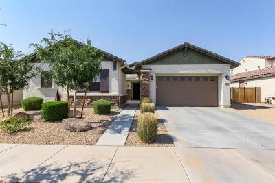 Queen Creek Single Family Home For Sale: 19748 E Walnut Road