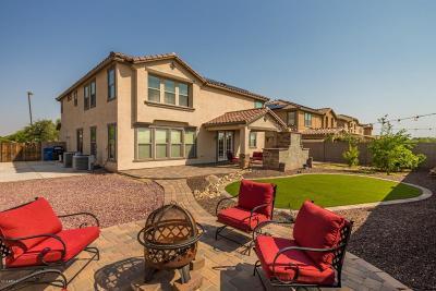 Surprise Single Family Home For Sale: 16481 W El Cortez Place
