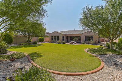 Goodyear Single Family Home For Sale: 15824 W Bonitos Drive