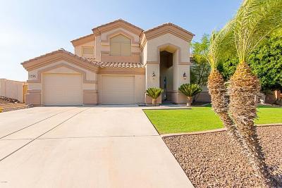Phoenix Single Family Home For Sale: 1516 E Villa Theresa Drive