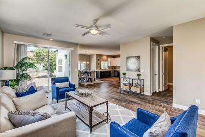 Phoenix Single Family Home UCB (Under Contract-Backups): 3638 E Earll Drive