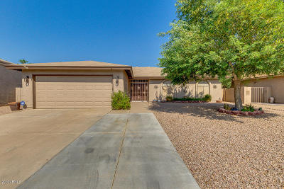 Sun Lakes Single Family Home For Sale: 26441 S Sedona Drive