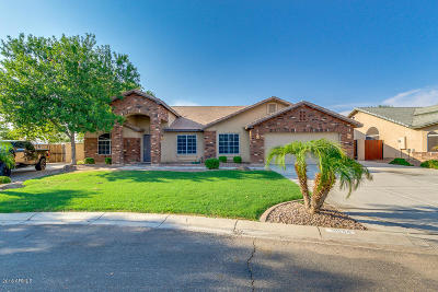 San Tan Valley Single Family Home For Sale: 3934 E Meadow Lark Way