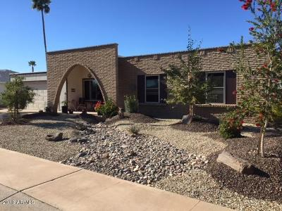 Sun City Single Family Home For Sale: 9110 W Long Hills Drive