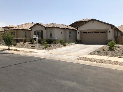 Queen Creek Single Family Home For Sale: 22243 E Munoz Court