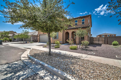 Laveen Single Family Home For Sale: 6730 S 76th Drive