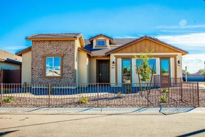 Avondale Single Family Home For Sale: 11324 W Vernon Avenue