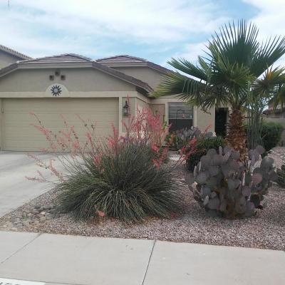 Maricopa Single Family Home For Sale: 45029 W Paraiso Lane