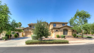 Gilbert Single Family Home For Sale: 4728 E Ruffian Road