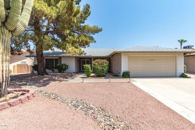 Phoenix Single Family Home For Sale: 11445 S Iroquois Drive
