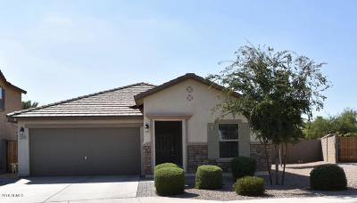 Chandler Single Family Home For Sale: 300 N Norman Way