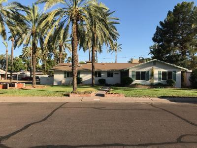 Tempe Single Family Home For Sale: 103 W Palmdale Drive