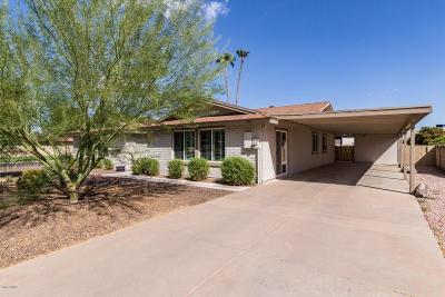 Phoenix Single Family Home For Sale: 11801 S Ki Road