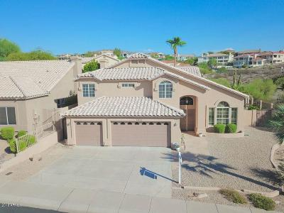 Phoenix Single Family Home For Sale: 13433 N 13th Street